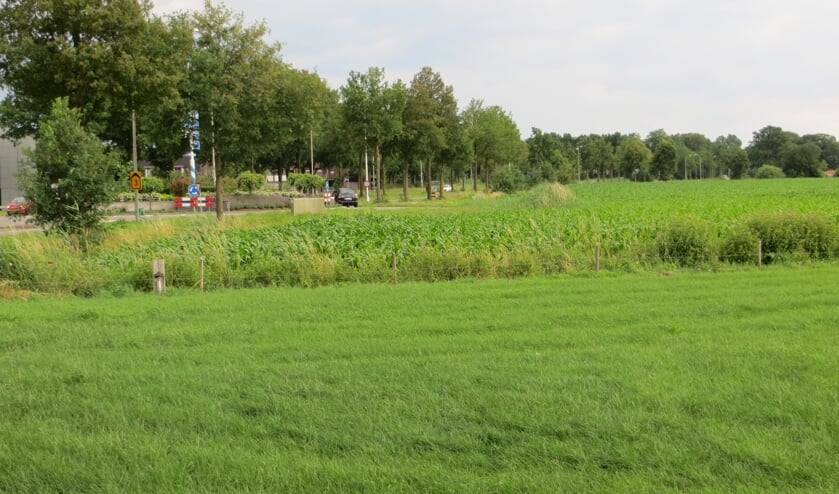 Tuunterveld, een van de locaties voor nieuw bedrijventerrein, die opnieuw wordt beoordeeld. Foto: Bernhard Harfsterkamp