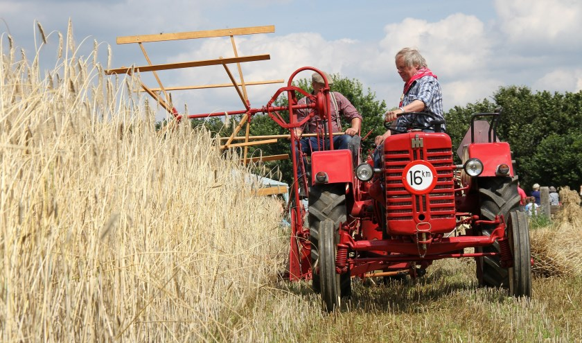 Rogge maaien tijdens de oogstdag bij Feltsigt.