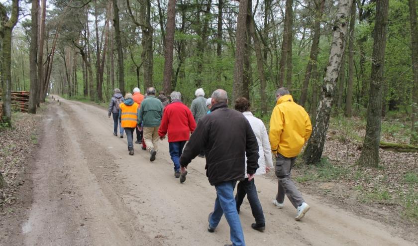 Voor activiteiten als samen wandelen of samen fietsen worden vrijwilligers gezocht. Foto: PR