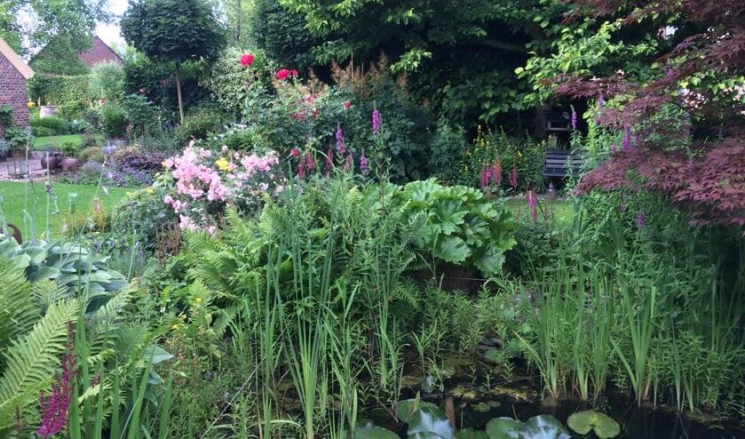 Tijdens het open tuinen weekend zijn verschillende tuinen te bezichtigen. Foto: PR