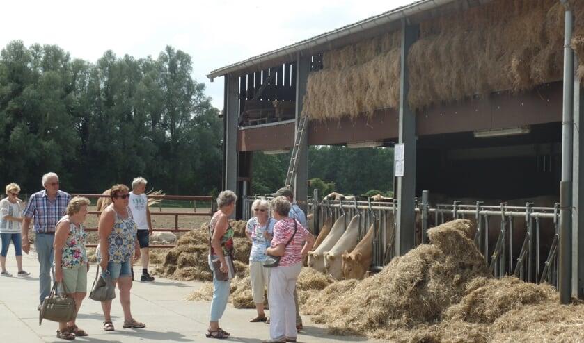 Als laatste werd het bedrijf van Wim en Linda Rietman aan de Baakseweg in Hackfort bezocht. Foto: Jan Hendriksen.