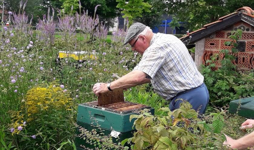 Imker Gert Hartman in de weer bij een bijenkast. Foto: archief