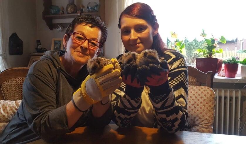 Yvonne (links) en Natalja met enkele egeltjes. Foto: Iris Jansen