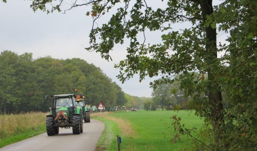 Trekkers op weg naar het Wooldseveen. Foto: Bernhard Harfsterkamp