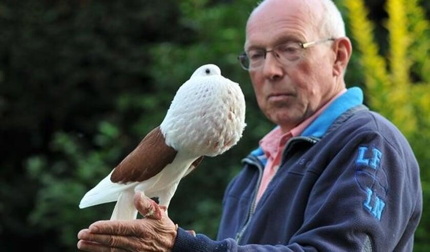 Harry Aalbers uit Winterswijk met een Voorburgse Schildkropperduif. Foto: Tonnie Buil