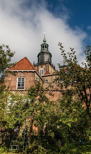In het zicht van de Walburgtoren binnen de oude stadsmuur worden hoogstamfruitbomen gesnoeid door de Zutphense Hoogstambrigade. Foto: Henk Derksen