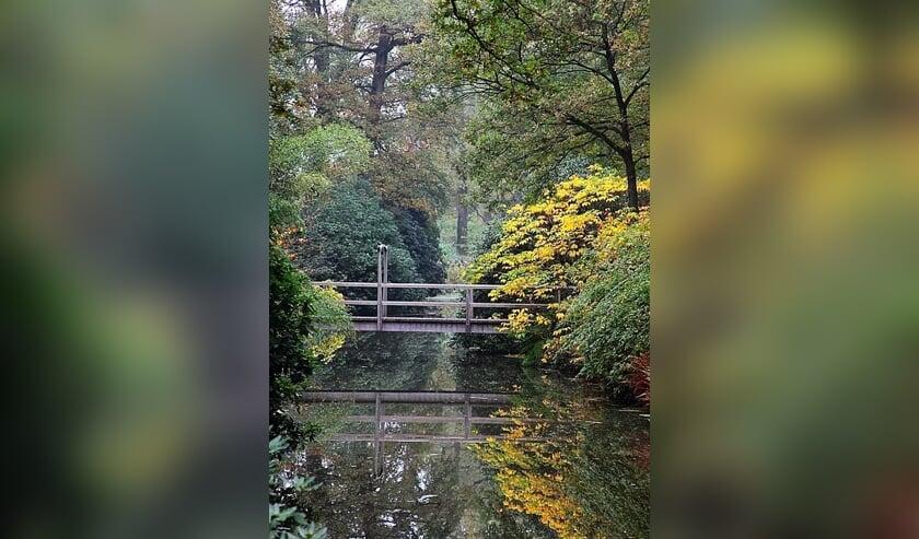 Kleuren van de herfst tijdens de open tuindagen van de Wiersse. Foto: De Wiersse