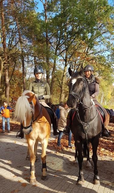 Te paard of met een aanspanning genieten van het herfstlandschap. Foto: PR