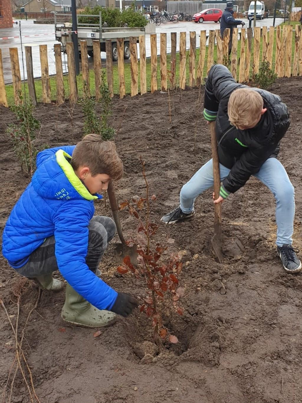 Kineren planten de bomen en struiken voor de tiny forest. Foto: Linda IJmker  © Achterhoek Nieuws b.v.