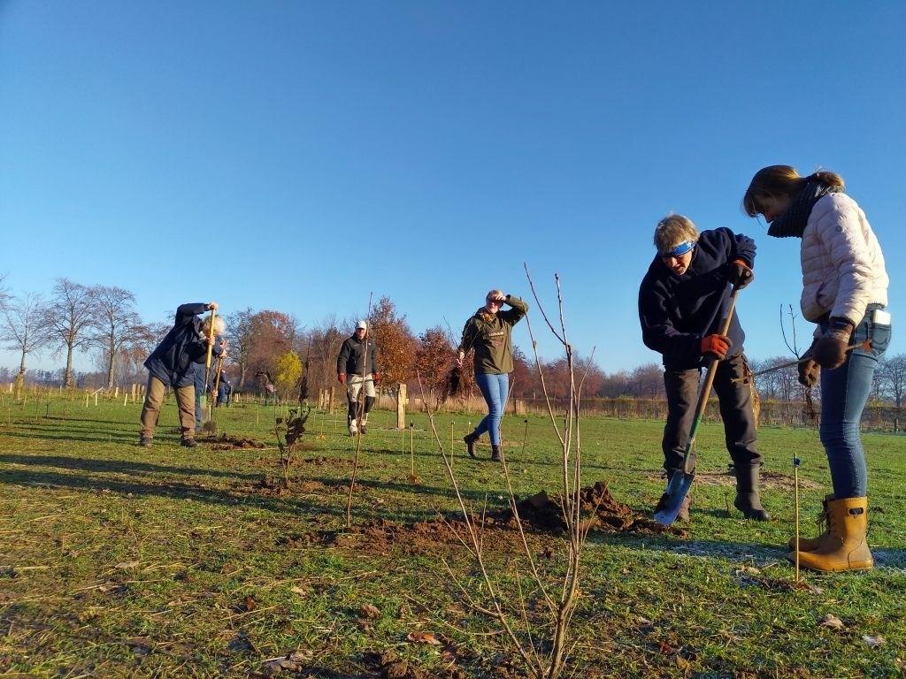 Door leden van Vereniging Bomenbelang Bronckhorst en andere belangstellenden werden 320 boompjes geplant in Hengelo. Foto: Feikje Breimer  © Achterhoek Nieuws b.v.