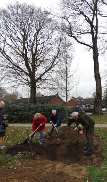 Enkele omwonenden van park De Braamberg hielpen mee met het planten een hopbeuk. Foto: Gerlinde Bulten