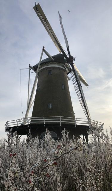 De Hollandsche Molen in Neede. Foto: Rieta van der Linde