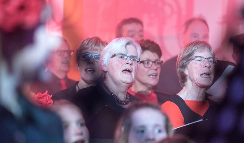 Uit een cursus zingen bij de Kunstkring ontstond een nieuw koor. Foto: Louis Swart