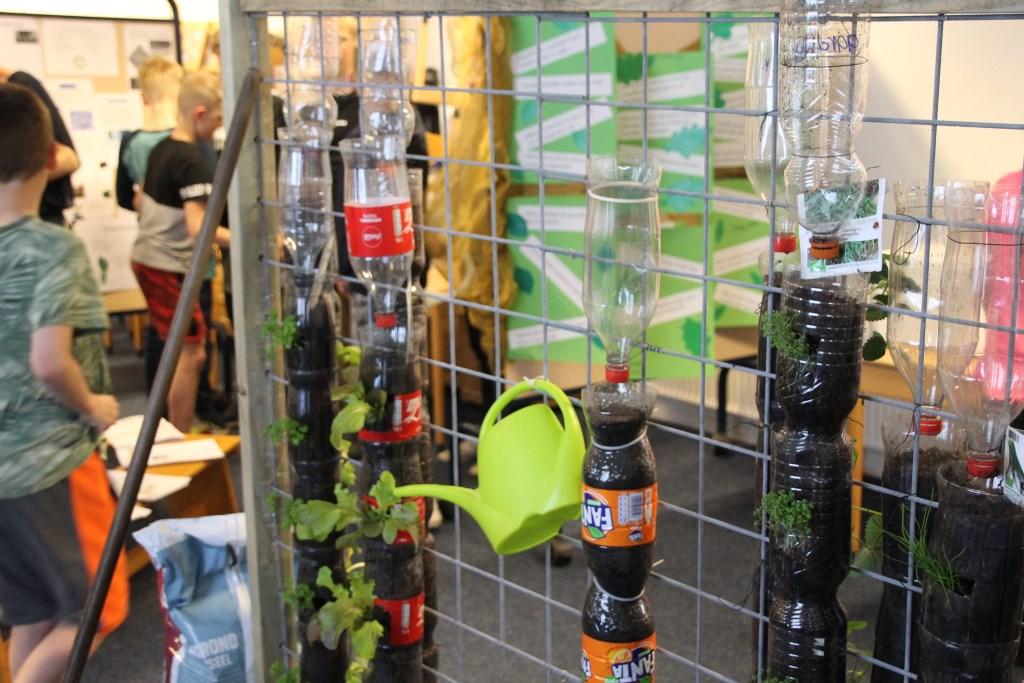 Verticaal tuinieren. Foto: Annekée Cuppers  © Achterhoek Nieuws b.v.