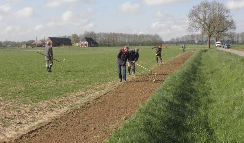 Inzaaien en onderwerken van het patrijzenmengsel door HSL vrijwilligers in de Luur. Foto: Jos Lohuis