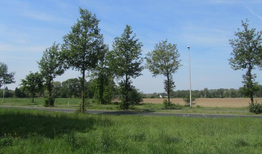 Het Tuunterveld is toch weer in beeld voor een nieuw bedrijventerrein. Foto: Bernhard Harfsterkamp