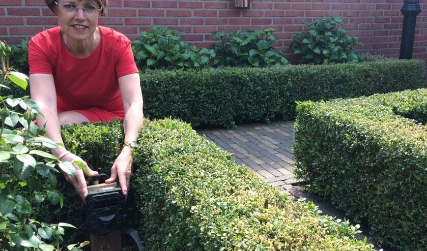 De eerste wildcamera in de tuin van wethouder Tineke Zomer. Foto: PR gemeente