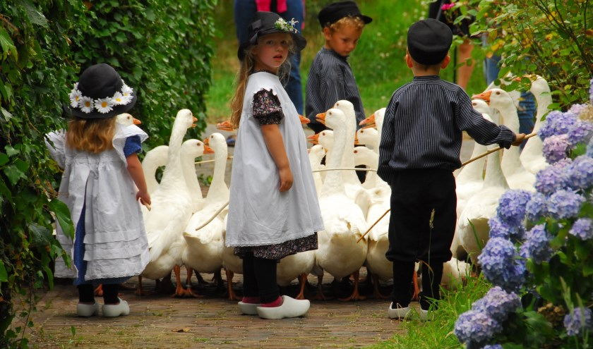 Kinderen kunnen zich opgeven voor het ganzenhoeden. Foto: PR