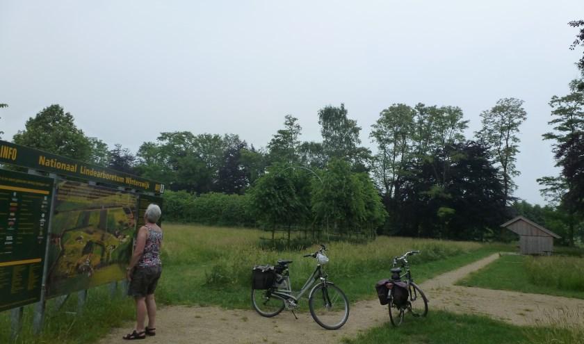 De route van juli gaat in de richting van Aalten en Corle bij Winterswijk. Foto: B. Bruggink