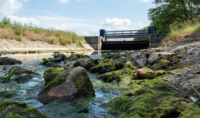 Weinig water in de Bielheimerbeek, nabij de Berkelderstraat. Foto: Burry van den Brink
