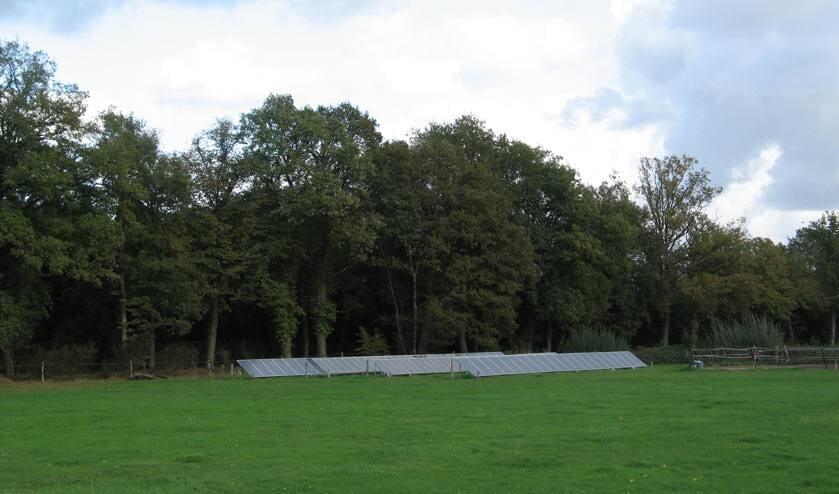 Zonnepanelen in een weiland in Kotten. Foto: Bernhard Harfsterkamp