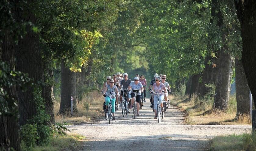 Niet alle paden en wegen zijn zo beschaduwd, dus de organisatie heeft de starttijden van de fietsvierdaagse aangepast. Foto: PR