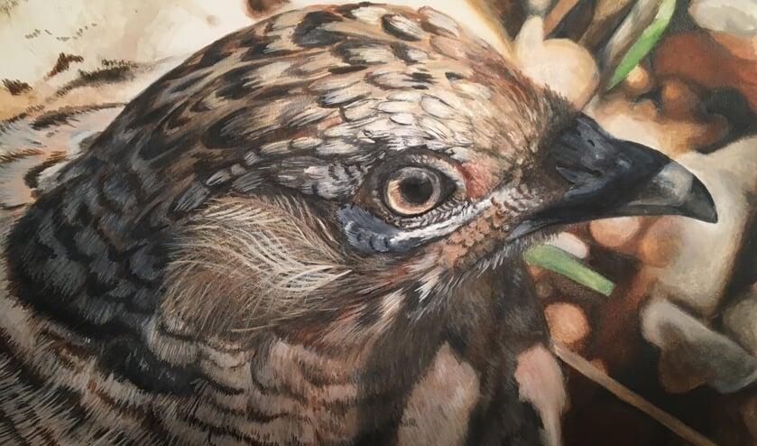 Op jonge leeftijd was Erik Wessels al gefascineerd door de natuur en begon hij met tekenen en schilderen van met name vogels en inheemse dieren. Foto: PR.