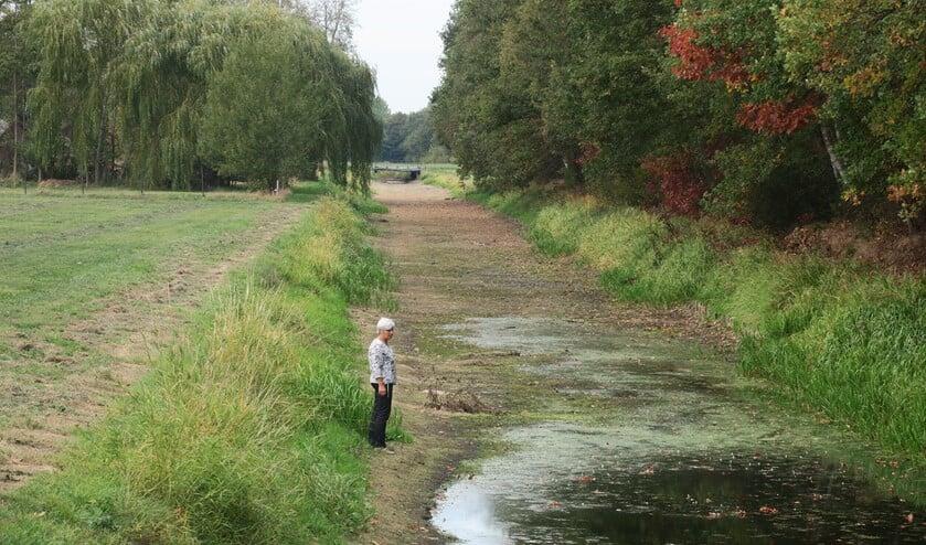 Vorig jaar hield de droogte lang aan waardoor waterlopen uiteindelijk helemaal droog vielen. Foto: PR