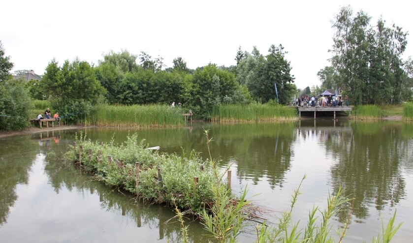 De eerste visparel van Nederland: visvijver 't Joostink in wijk Biesterveld. Foto: Liesbeth Spaansen