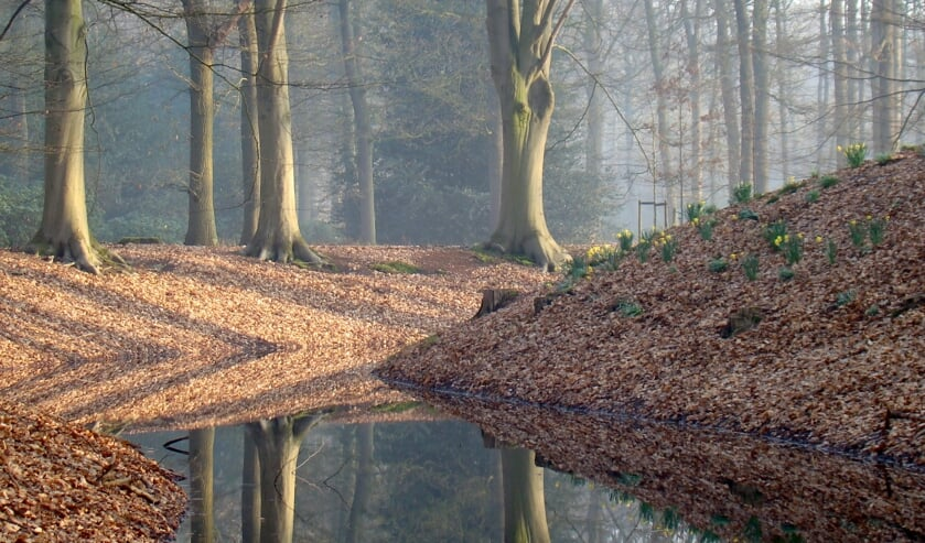 Een van de prachtige natuurfoto's die te zien zijn op de expositie van de GelderseNatuurFotografie. Foto:  Jeanette van Erk.