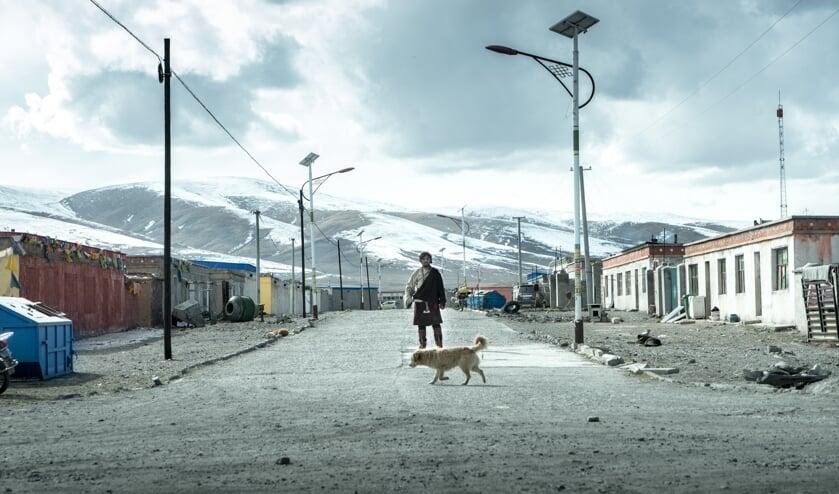 Beeld van de  film Jinpa. Foto: PR
