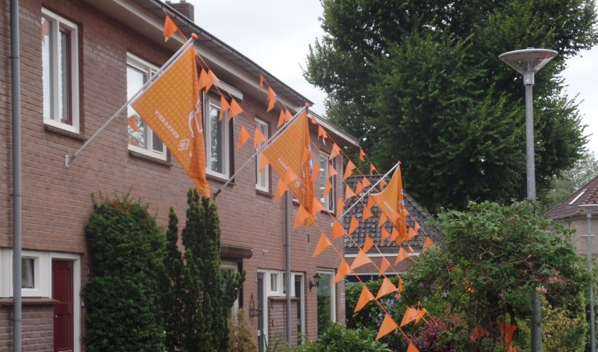 De nieuwe oranje jubileumvlaggen sieren momenteel mening huis in Wichmond en Vierakker. Foto: Jan Hendriksen