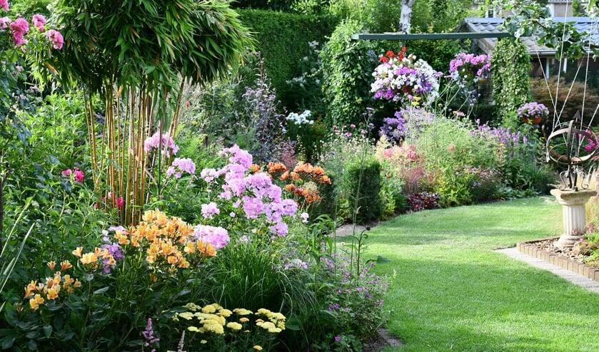 De tuin van de familie Memelink. Foto: Anton Memelink