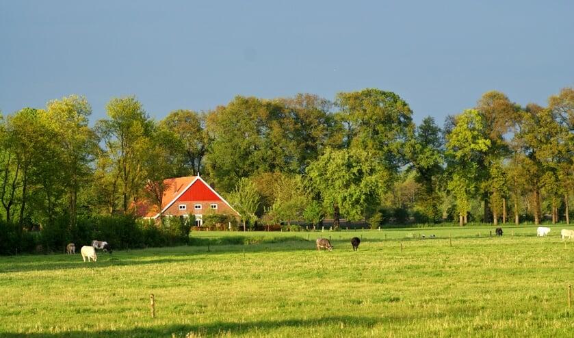 Het landschap in de Achterhoek. Foto: PR