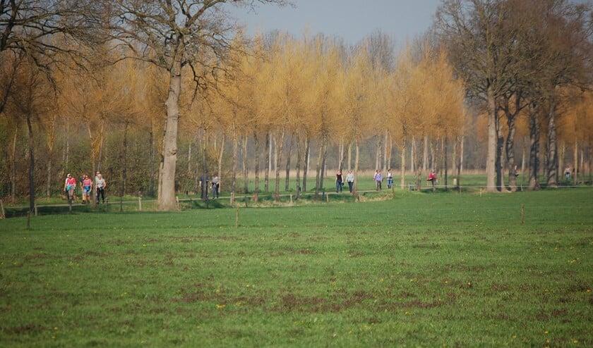 Wandelen door het fraaie herfstlandschap. Foto: PR