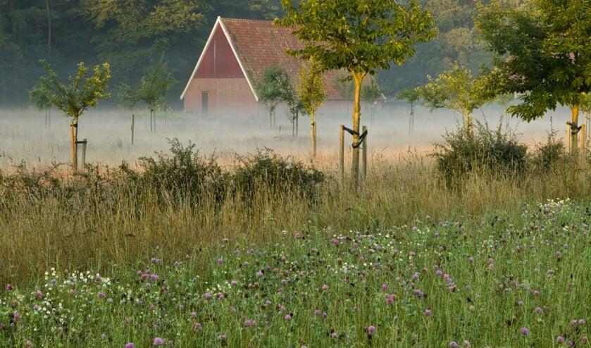 Landgoed Menink. Foto: Natuurmonumenten/Geurt Besselink