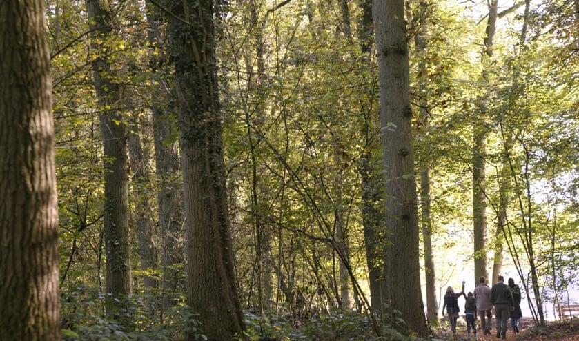 Wandelen op Hackfort. Foto: Landgoed Hackfort - Natuurmonumenten/René Koster