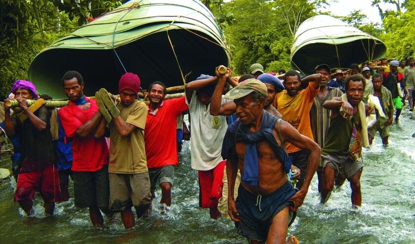 <p>Beeld van Into the Jungle. Foto: PR</p>