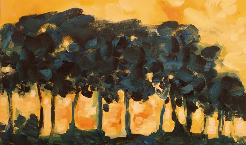 <p>Werk van Henk Terwel: 'Spiegelingen' in het Museum voor Achterhoekse Schilderkunst in Vorden. Foto: Jaap Driest</p>