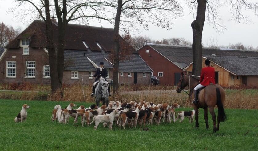 <p>Zaterdag geen meute honden die achter een urinespoor van een vos aanjagen zoals vorig jaar in Ruurlo. Foto: Jan Hendriksen</p>