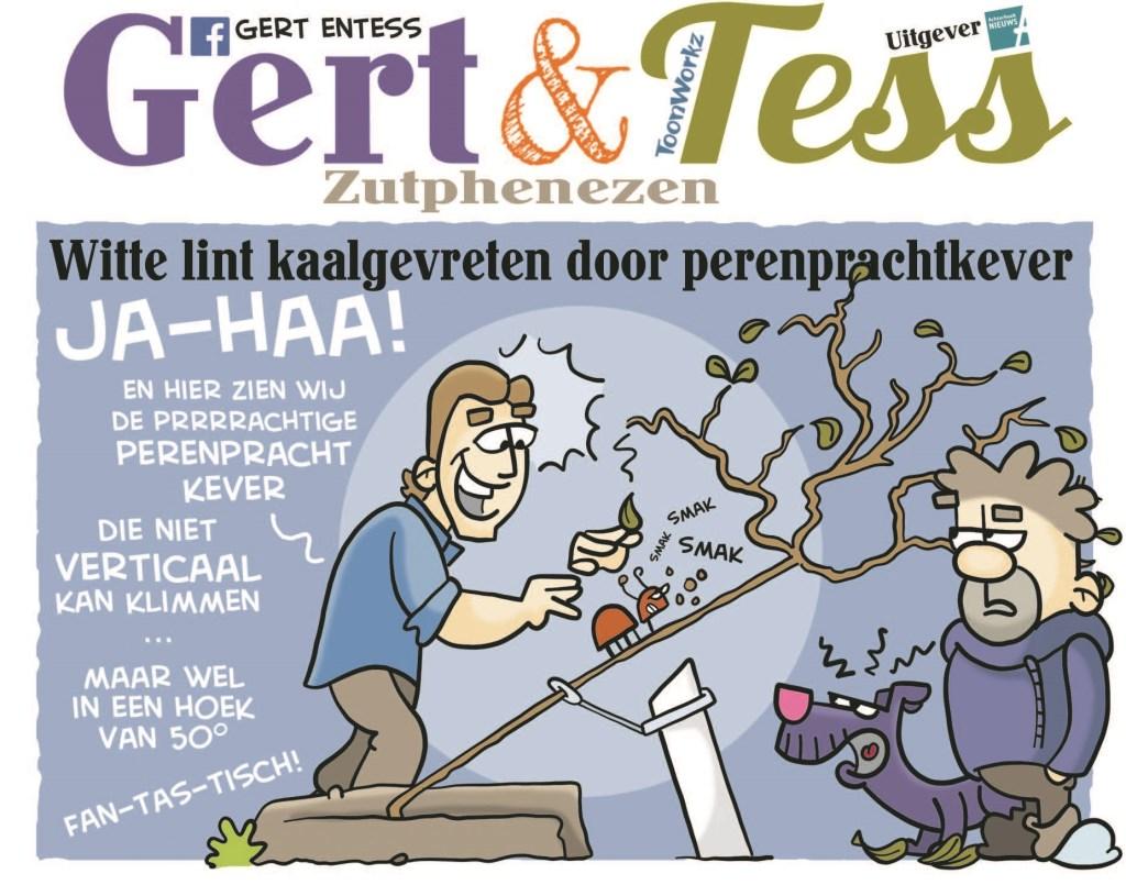 Juni 2018.  © Achterhoek Nieuws b.v.