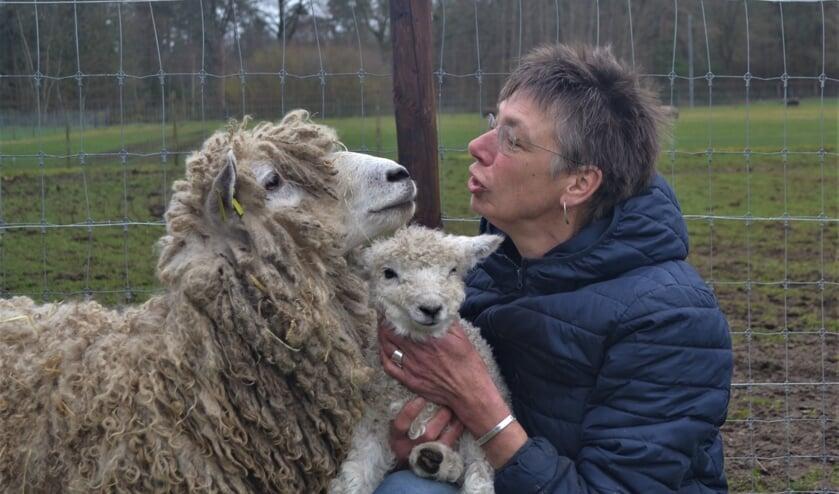 Karin Wassink met haar Leicester Longwool-schapen. Foto: PR