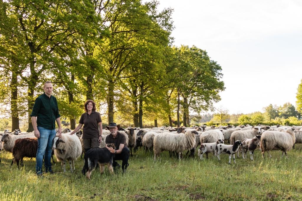 Bram Sprey, Elly en Harrie Jansen met de kudde. Foto: Henk Derksen  © Achterhoek Nieuws b.v.