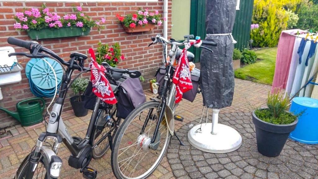 'Pinksterzwaai' werd gebracht op de fiets. Foto: Maurice Wassink  © Achterhoek Nieuws b.v.