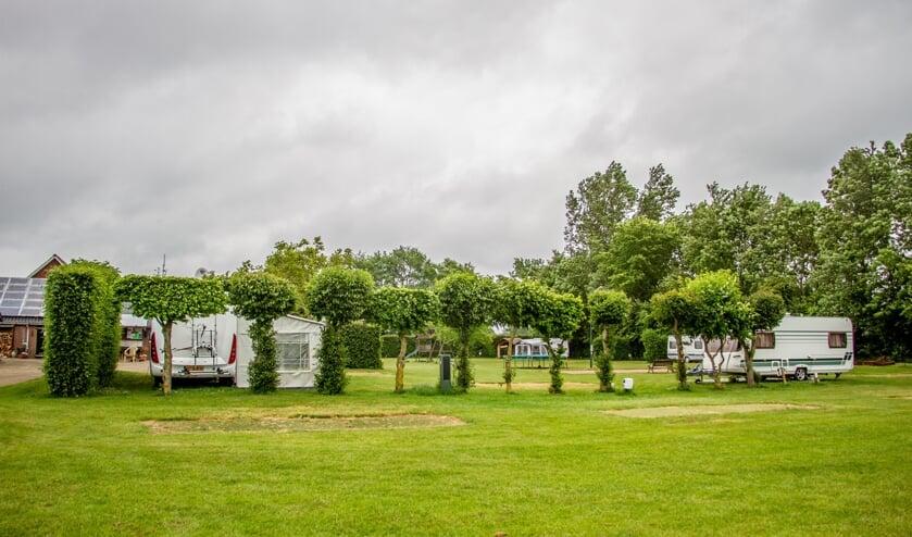 Het terrein van Camping Warnstee in Wichmond is ruim, met steeds één plek leeg tussen de caravans in. Foto: Liesbeth Spaansen