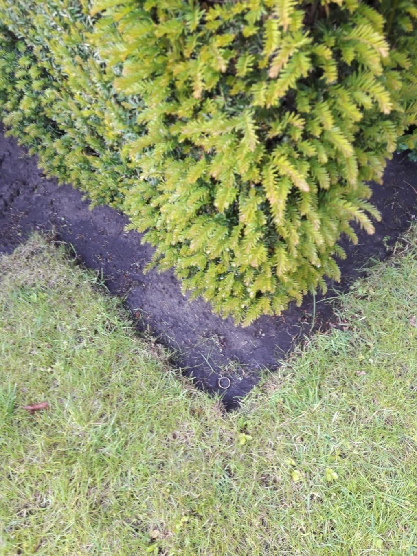 De ring in de tuin. Foto: PR  © Achterhoek Nieuws b.v.