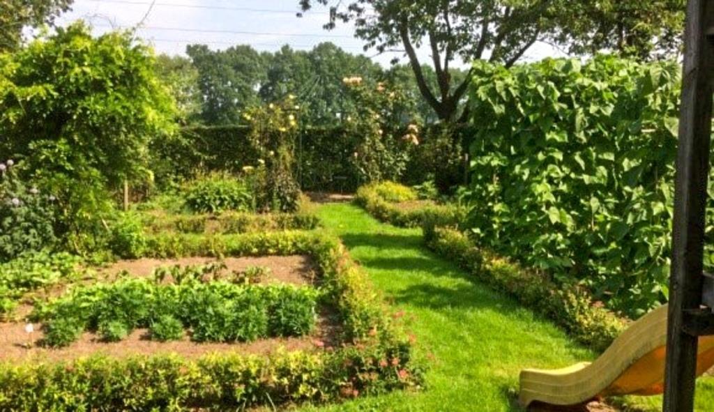 De familie Wagenvoort legde in een van de tuinkamers een groentetuin aan. Foto: Ben Wagenvoort  © Achterhoek Nieuws b.v.