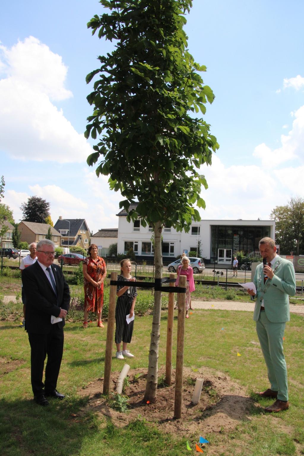 Burgemeester Anton Stapelkamp spreekt bij de Vrijheidsboom. Links burgemeester Nebelo, achter de boom kinderburgemeester Rosanne Lohuis. Foto: Lydia ter Welle