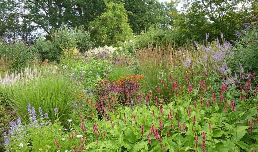 Zes tuinen zijn te bekijken in het Tuinrondje Gorssel. Foto: PR