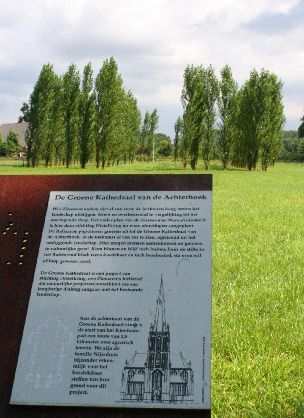 De Groene Kathedraal aan de Rouwhorsterdijk. Foto: Jos Betting  © Achterhoek Nieuws b.v.